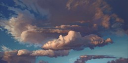 heaven view | 15 x 30 in. oil on canvas | SOLD private collection