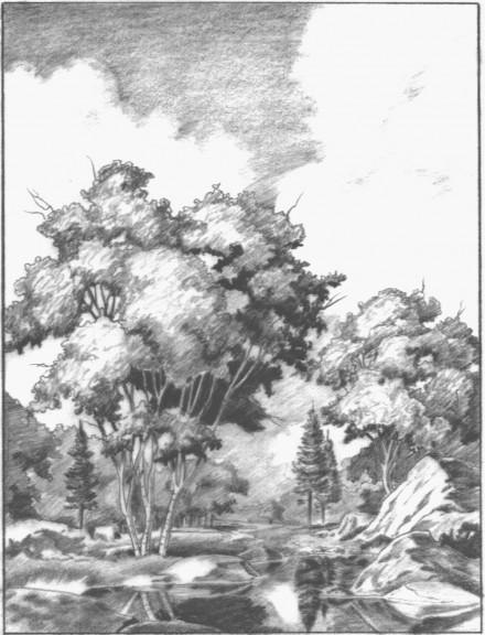 a midsummer's day  |  graphite study